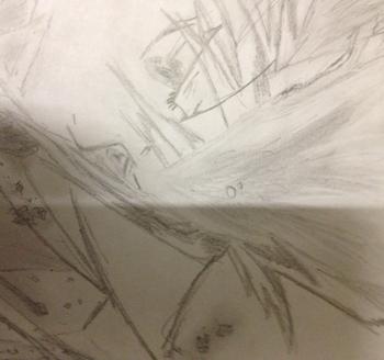 Tsunayoshi _img6