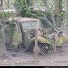 Traction Citroën