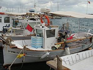 majorque 2010 127