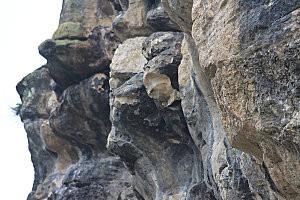 La Roque-Gageac(41)