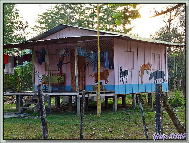 Blog de images-du-pays-des-ours : Images du Pays des Ours (et d'ailleurs ...), Promenade dans le hameau de Guadaloupe - La Palma - Puerto Jiménez - Costa Rica