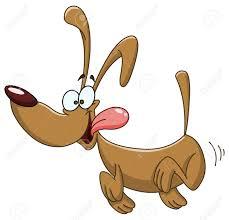 Wolu1200 : Chihuahua trouvé ce samedi matin au parc de Roodebeek.