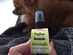Parfum spécial balades