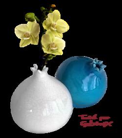 Vases  avec et sans fleurs