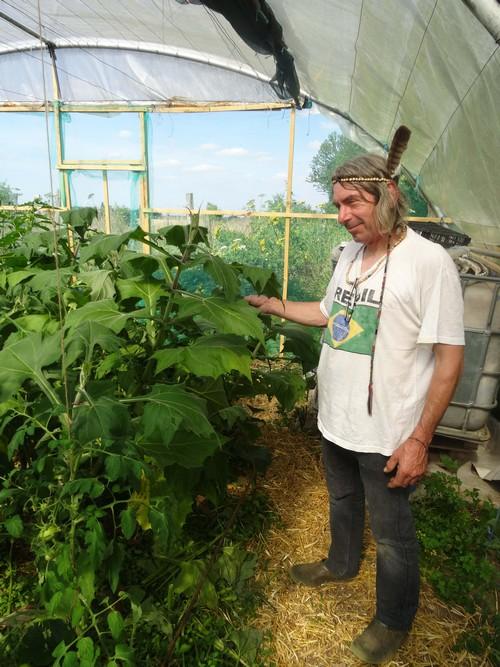 """Une jolie rencontre avec Robert Cruel, alias """"Monsieur Tomate"""", collectionneur passionné de tomates et de plantes amérindiennes..."""