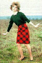 1963 : le chemisier en Vichy bleu et la série champêtre.