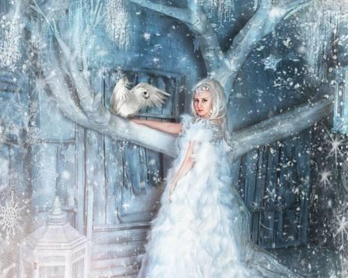 Féerie des neiges