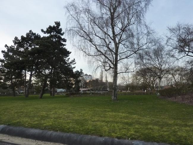Ballade au parc