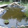 aménager un bassin