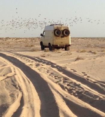 389 Nouakchott Retour de la plage