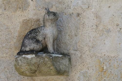 01 - Des chats en pierre
