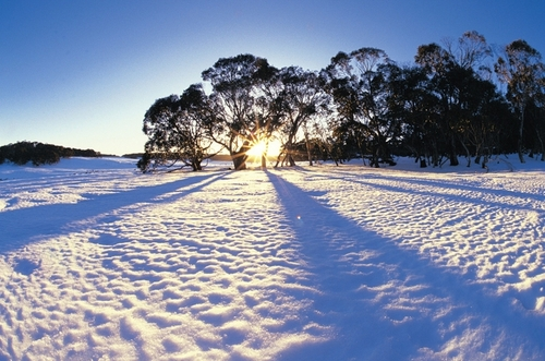 Il n'est pas d`hiver sans neige , ....................