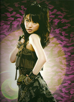 Morning Musume Concert Tour 2010 Aki ~Rival Survival~ (Visual Book)