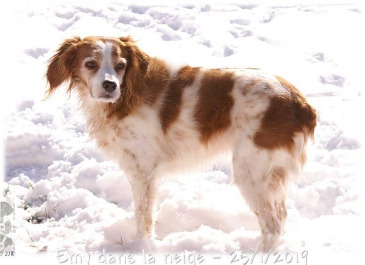 Nouvelles Emy - Je m'éclate dans la neige