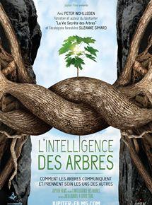 """Résultat de recherche d'images pour """"film l'intelligence des arbres"""""""
