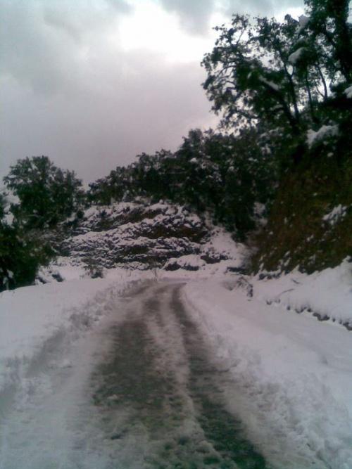 - جيجل / منكوبون وضحايا الثلوج يطالبون بفتح تحقيق حول طريقة توزيع المساعدات