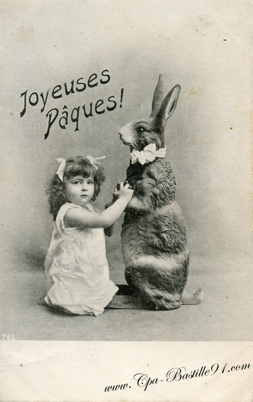 22 - Cartes postales et lapin
