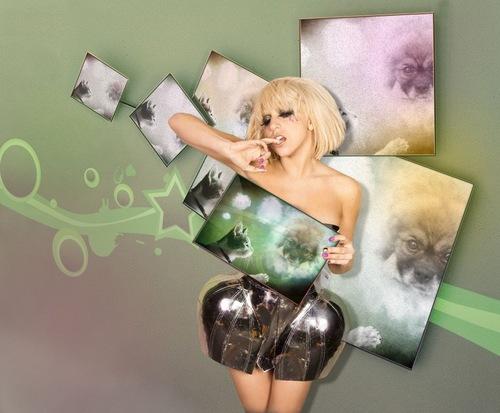 Photomontages avec des stars