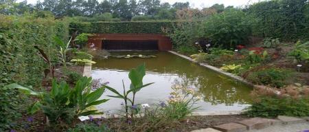 Bambois (84)