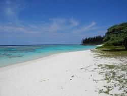 L'île de MARE et début LIFOU