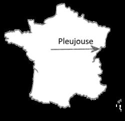 Le château de Pleujouse.