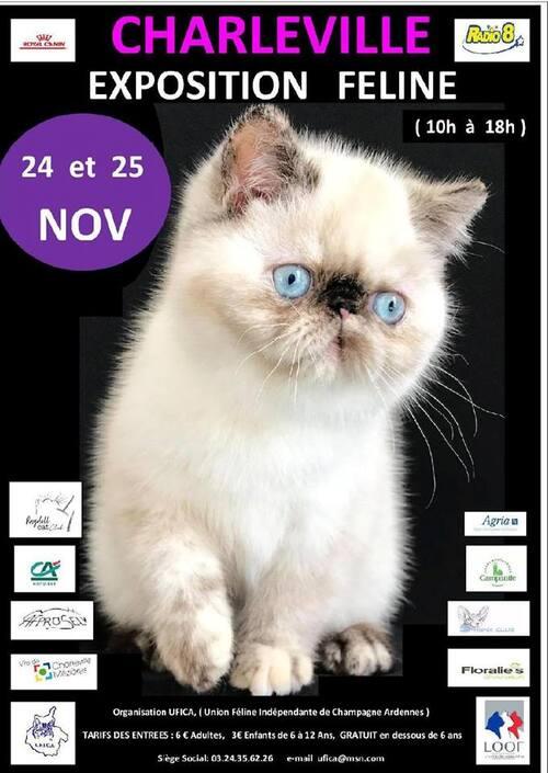 Expositions de novembre :