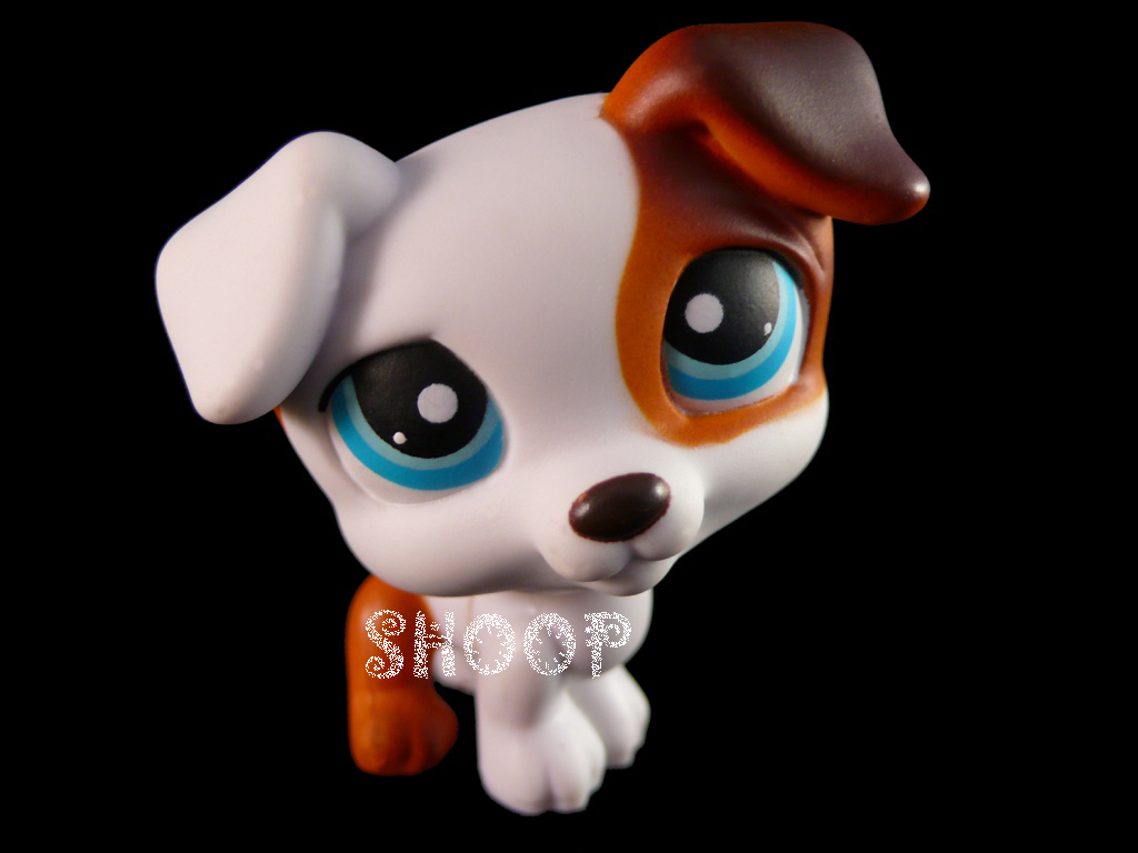 LPS 151