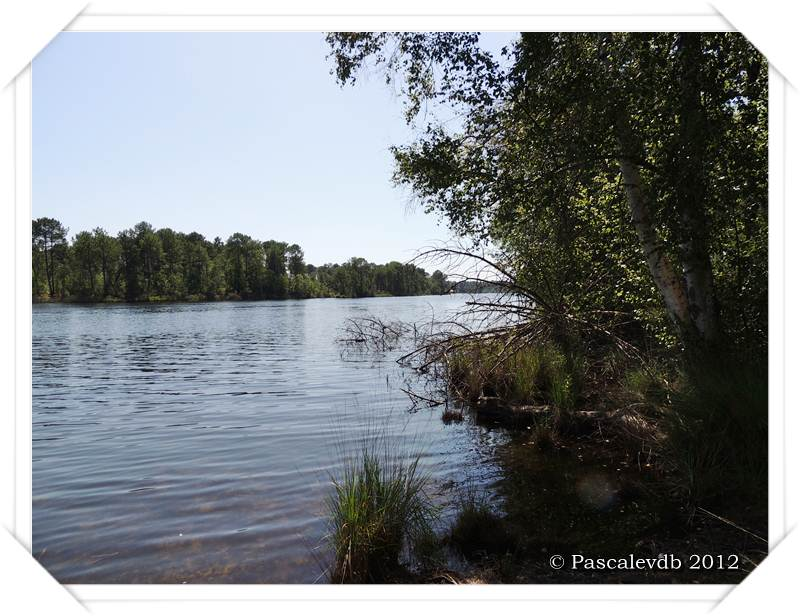 Les lacs de Lamothe, Bernadas et grand Bernadas à Hostens - 1/7