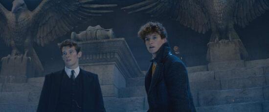 """Les Animaux Fantastiques 2 : Les Crimes de Grindewald """"DVD Cinéma"""""""