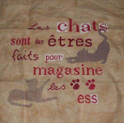"SAL "" Les Chats"" - 13"