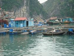 Hanoi et Baie d'Halong