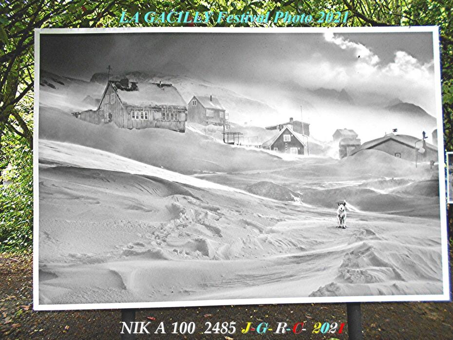 A. L. P. 2021 L-G  1/2  Vivre & survivre dans le grand nord  D  22 -07-2021