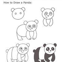 Pandas Et Pousses De Bambou Mitsouko à Lécole