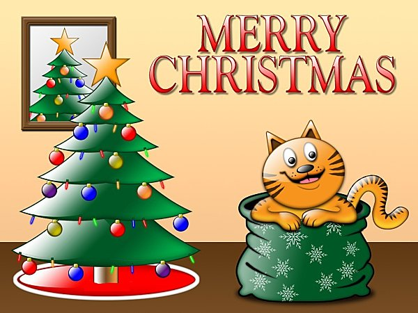 1229267858 1024x768 of-cat-merry-christmas