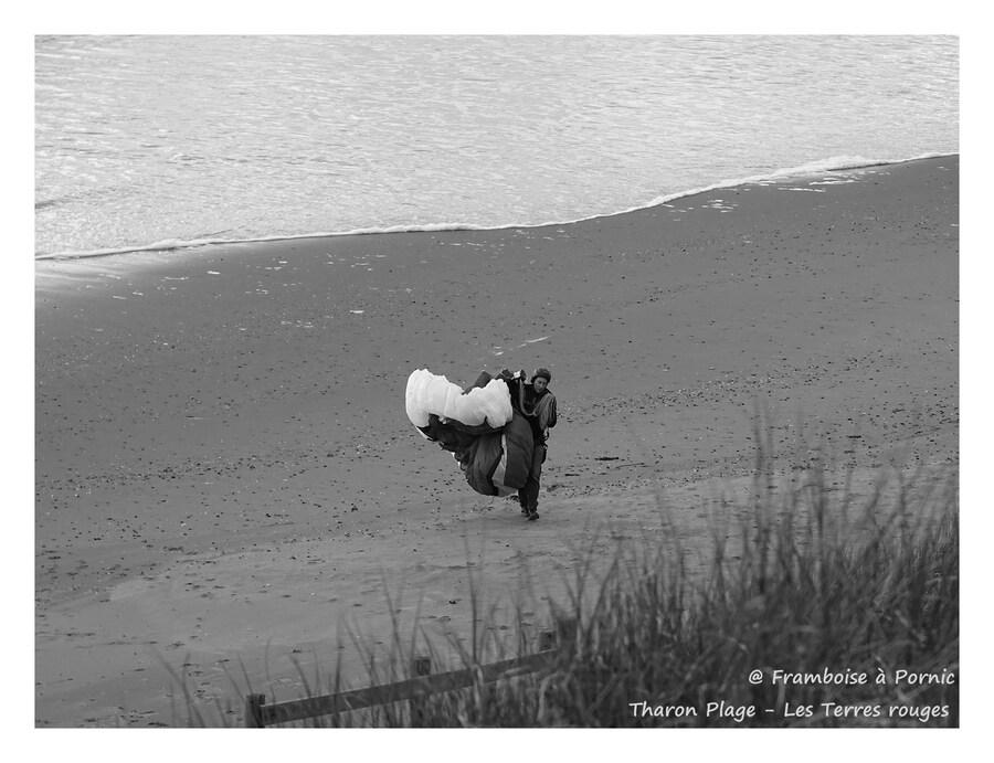 Tharon plage - Fais comme l'oiseau
