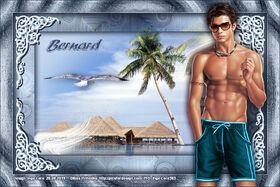 * Bernard *