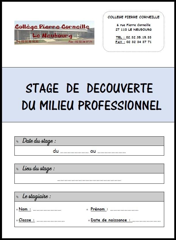 Modele Rapport De Stage A L Etranger Document Online