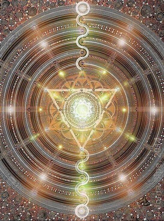 le champ magnétique terrestre relie tous les êtres