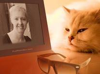 Votre cat-sitter expérimentée