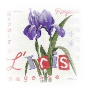 L'Iris de Lilipoints fin