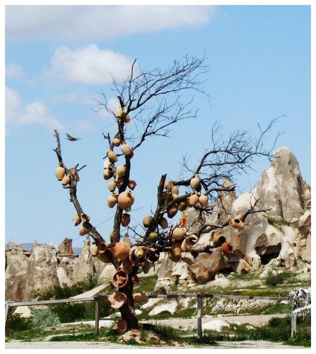 arbre aux cruches