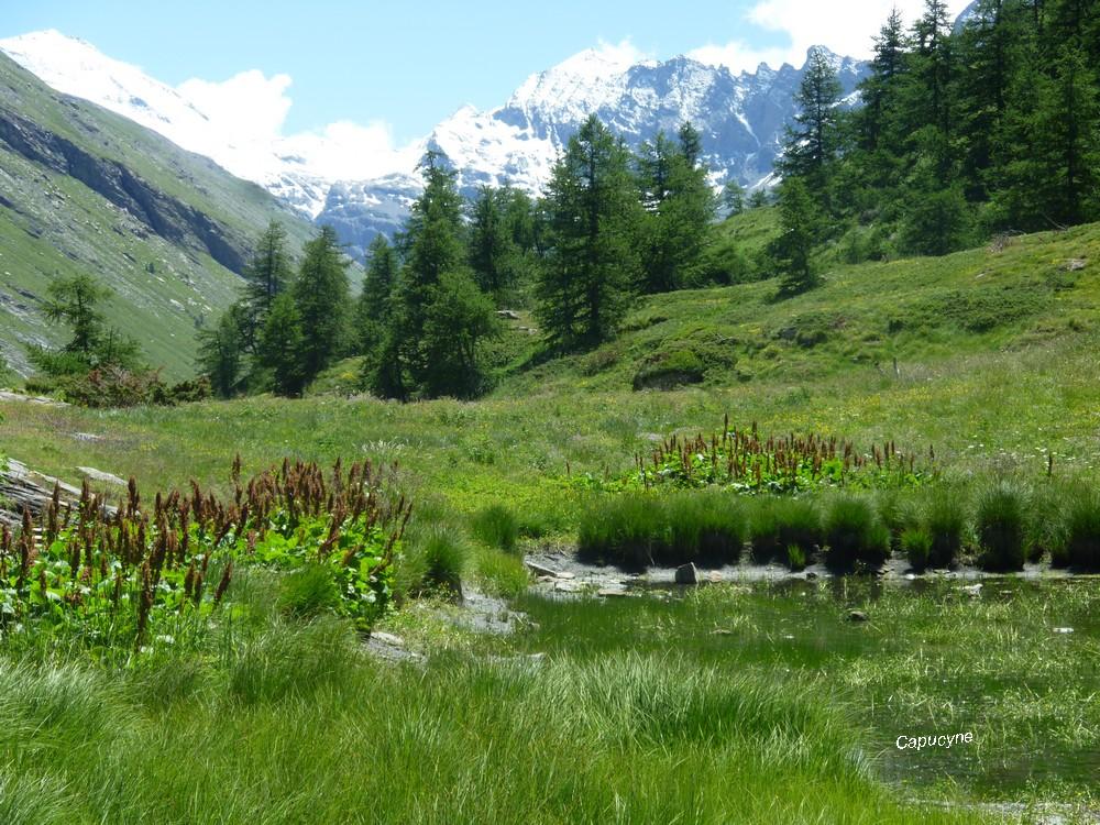 Haute-maurienne 2019 : quand les lacs prennent de la hauteur...