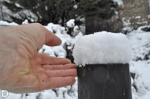 Neige aux Dames