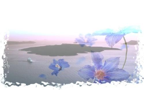 paysage-effet-Fleur.jpg