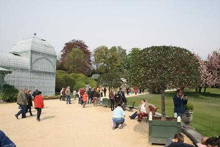 Les serres royales de Laeken. Belgique