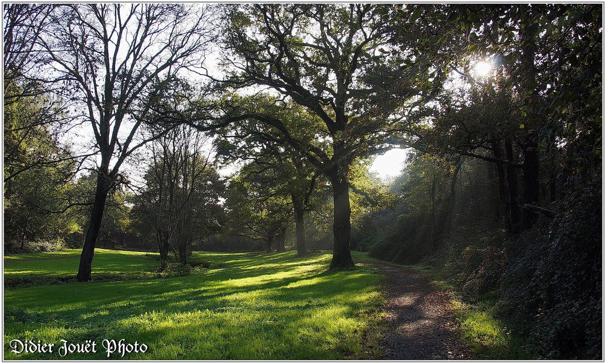 (85) Vendée - La Chaize le Vicomte (15) - Vallée Verte