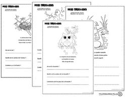Petits textes pour travailler la lecture et la compréhension en CP, lire, lecture, comprendre, compréhension, texte, cycle 2, Cp, CE1, CE2, oiseau, animaux, dixmois