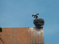 Une vespa 400 à Moscou