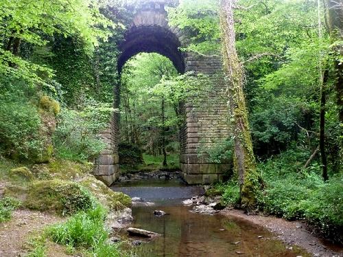 Mervent - le pont du Déluge