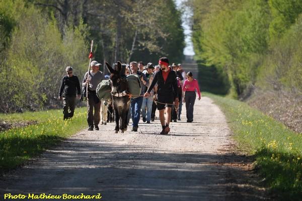 """""""La diagonale verte"""", une très belle randonnée à travers le futur parc National entre Champagne et Bourgogne..."""